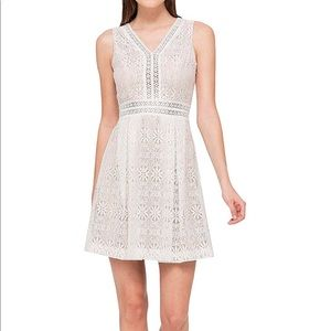 Jessica Simpson Cream Lace Fit and Flare Dress 14